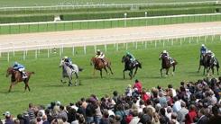 Courses hippiques - Parier sur le Grand Prix de Vichy 2009